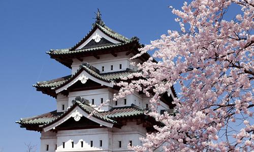 Nagoya - Osaka- Nara - Kyoto- Núi Phú Sỹ - Toky...